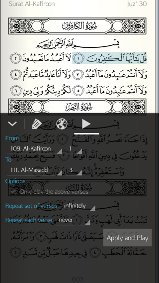 Quran - Play Options